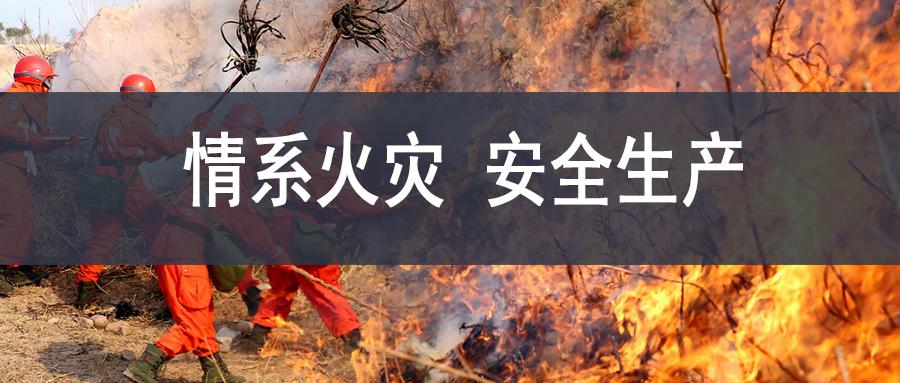 凉山大火-wei.jpg
